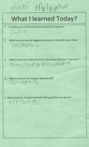 Q&A sample